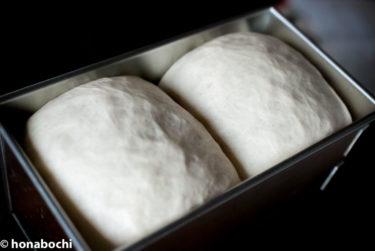 イーストとは?天然酵母とは?パンを作るならどちらがおすすめ?それぞれの特徴と使い方を紹介します【イースト編】