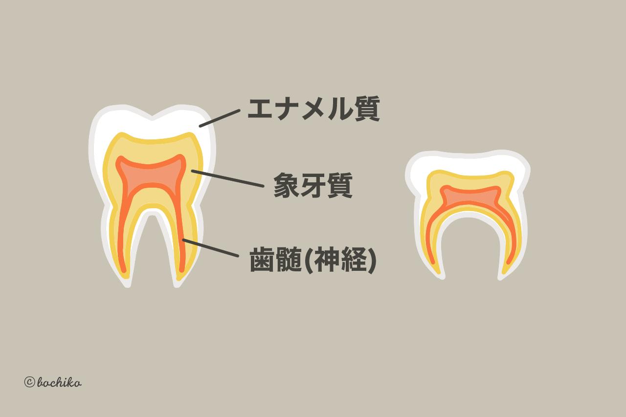 子供の将来の歯を守る!乳歯の虫歯予防と仕上げ磨きのコツ